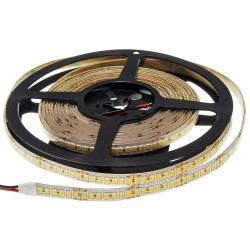 24V LED ЛЕНТА 1ролка-5m, 2835 196L/M 12MM 20W/M 2100LM/M IP65